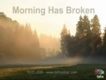 Morning Has Broken - Tahapinar