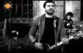 Erdem Yener - Hayvan | Sarginmuzik