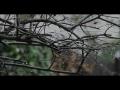 Juliet By Anne Fortier Book Trailer