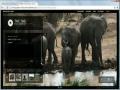 Premium WordPress Portfolio Theme - TheThe Photographer