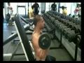 Rocky Presses - Shoulder Workouts