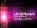 SEO Linkbygging 2012