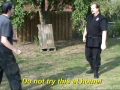 Martial Art: Lin Kuei Jitsu Invented By Sensei Titus Jansen