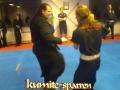 Sparring Of Koga Ryu Ninjutsu, Sensei Titus Jansen (martial)
