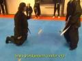 Grappling, BJJ, Koga Ryu Ninjutsu, Sensei Titus Jansen