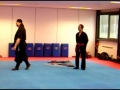Koga Ryu Ninjutsu, Explained By Sensei Titus Jansen