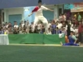 2008 Hong Kong Wushu Competition